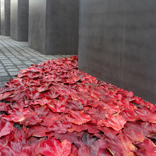 2010/ Holocaust Memorial, Berlin